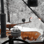 Winterdienst-mti-Steyr-8080-im-Wald